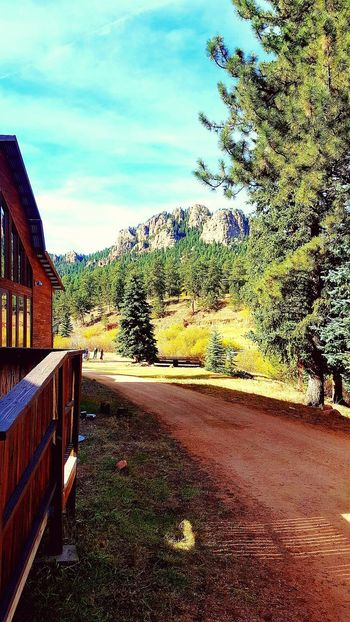 Colorado Colorado Photography Mountains Mountains And Sky Cabin In The Woods Cabin Nature Outdoors Forest Forest Photography Beauty In Nature Vacations Tranquility Tranquil Scene Beautiful No People Dirt Road Pathway Nature Path Landscape Mountainscape Autumn