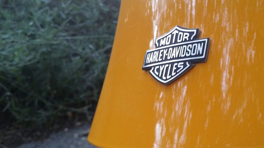 Harley Davidson Yellow Primo Piano Road Sign Harley4life No People Harleydavidson Lifestyles Amazing Day Sunny That's Me Particulars Looking At Camera