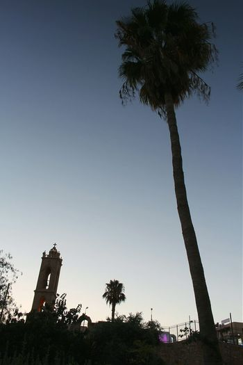 Cyprus Ayianapa Architecture Sky Ligth And Shadow Creative Light And Shadow Tree Palm Trees