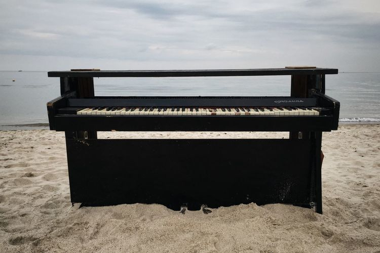 Beach Beauty In Nature Black Sea Black Sea Shore Cloud - Sky Day Horizon Over Water Nature Leiblingsteil Odessa Odessa,Ukraine Outdoors Palm Tree Palm Trees Piano Piano Key Piano Keyboard  Piano Keys Piano Lover Piano Time Sea Sky Summer Summertime Water