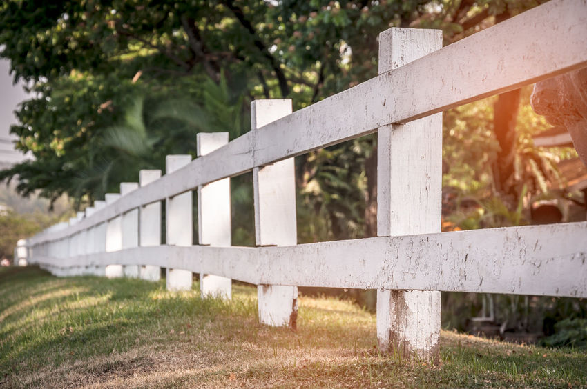 Rural wooden old fence in garden with plant and tree Architecture Barrier Boundary Bridge Bridge - Man Made Structure Built Structure Concrete Day Fence Focus On Foreground Grass Land Nature No People Outdoors Plant Protection Railing Tree White Color Wood - Material