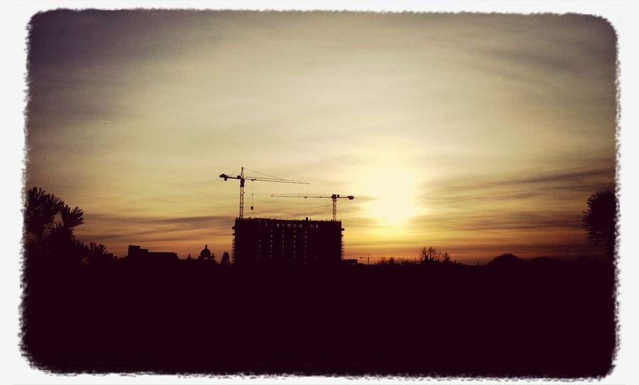 Hamburg Sunset Silhouette