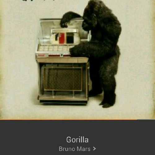 This song >>>> Gorilla Brunomars Lovethissong Amazonmp3