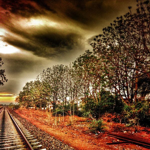 Alone Way ... Wonderer Railway Alone Tree Trees Clouds Indianvillage _soi Lonelyplanet Lonelyplanetindia Instagramhub Instagram