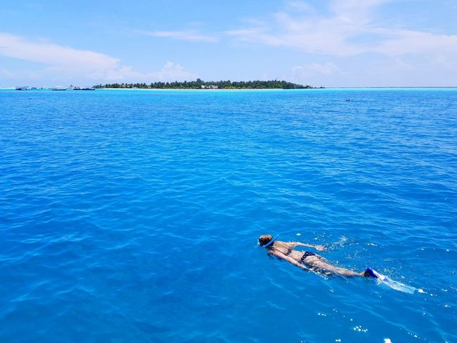 A girl snorkeling in Maldives Snorkeling Maldives Blue Ocean Trip Excursion Vacation Outdoor Dive Swim Water Fun Sea Outdoors Day Water Blue Swimming One Man Only One Person Adult Nature Young Adult The Traveler - 2018 EyeEm Awards