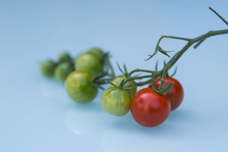 Blue Close-up Composition Focus On Foreground Food Food And Drink Freshness Green Green Color No People Red Ripe Tomato Tomatoes Vegetable Vegetables Vegetarian Food BYOPaper! Visual Feast