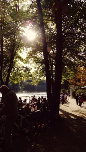 Sunshine And Shadows Lake View Sunny Day Outdoor Photography Berlin Photography Autumn colors Biergarten Herbstlicht Schlachtensee Taking A Break Relaxing Time Tree Shadow Silhouette Sunlight Water Beach Sky Tranquil Scene Woods Tranquility Idyllic Lakeside Non-urban Scene