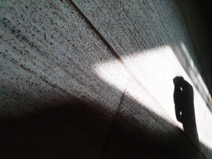 Shadow of person walking on wall