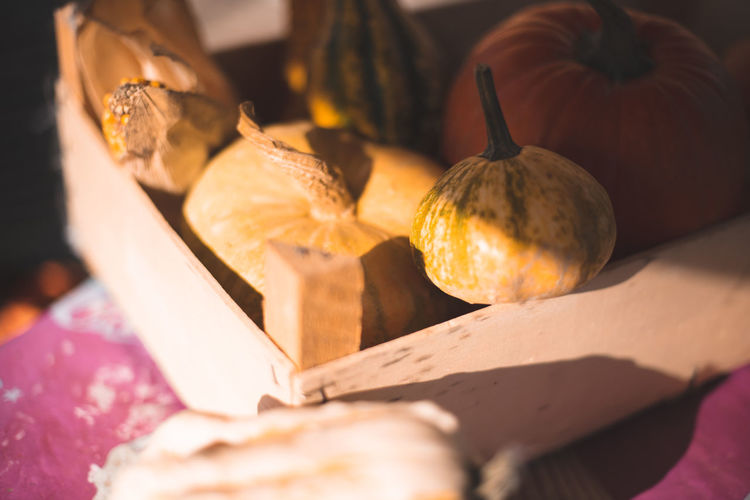 Autumn Mood Food And Drink Food Healthy Eating Freshness Wellbeing Close-up No People Still Life Sunlight Fruit Selective Focus Nature Indoors  Wood - Material Pumpkin Vegetable Day Table Group Of Objects Ripe 17.62°