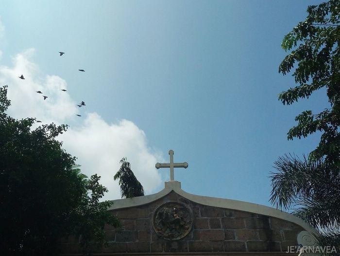Cross of