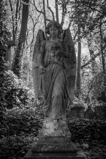 Statue in forest