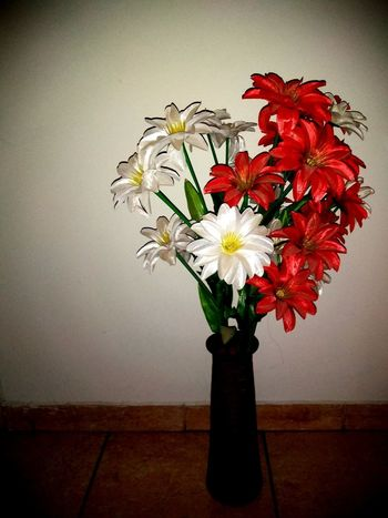 rincón Flower Head Flower Bouquet Vase Red Close-up Plant Life Flower Arrangement Daisy