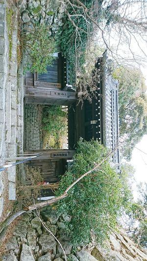 【Shiga,Japan】omihachiman city 近江八幡 Shiga,Japan Biwa Lake Tourism Japan January Ōmihachiman Greenhouse