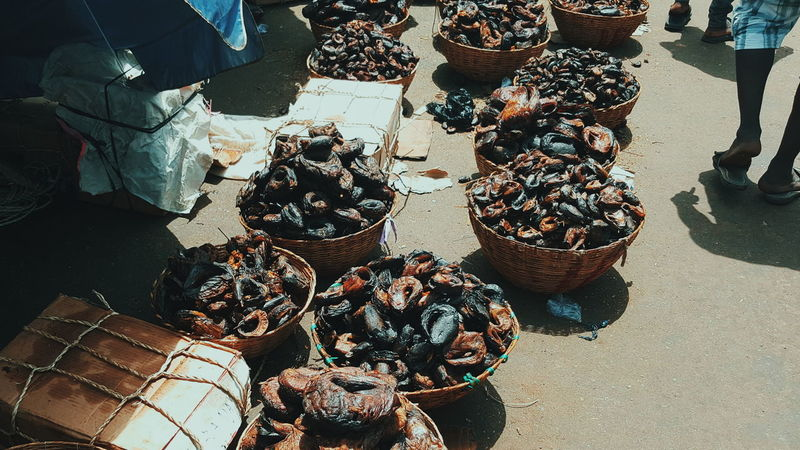 Merchandise Smoked Fish Merchant City Prosperity People Photography Urban Exploration Northern Nigeria Nigeria Africa Day To Day