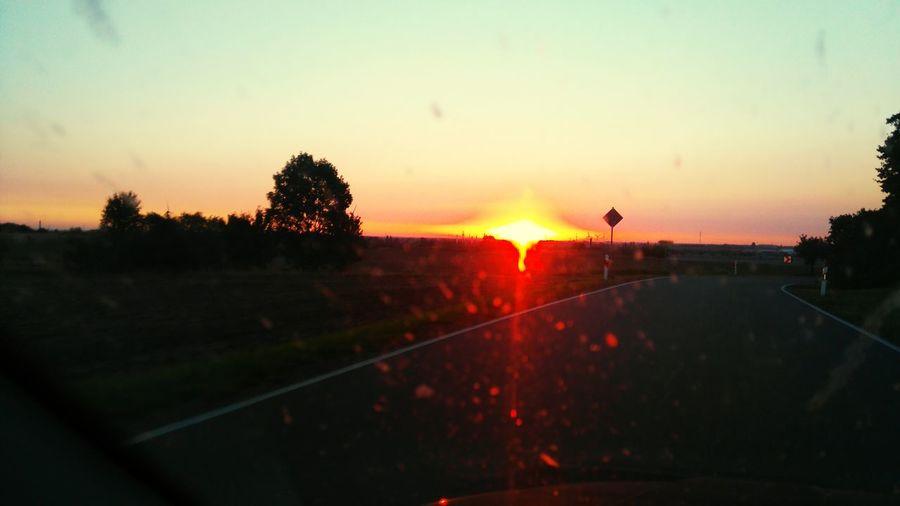 The last sunny