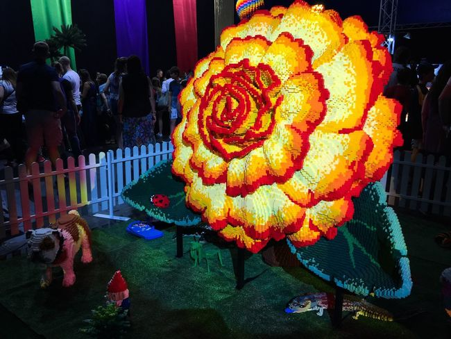 The Brickman Experience: Lego Flower Lego Photography Connected Event Western Australia Perth Brickman Experience April 2016 Lego Art Art Vibrant Bright Colors LEGO Flower Lego Flower Lego Sculpture Sculpture Three-dimensional Yellow Orange Red Lego Bricks Toys