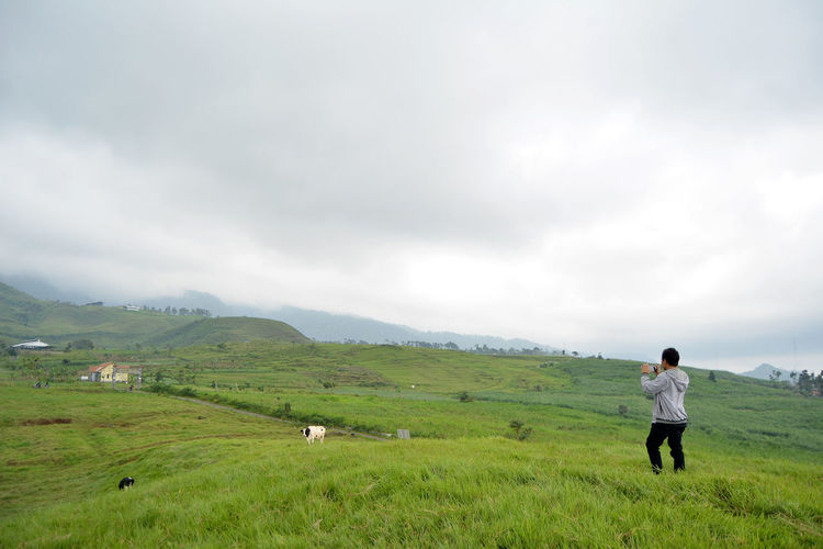 shoot day Grass Green Cow Alone Lonely Summer Blue Sky Mountain View Animal Themes Nature_collection Natural Mountain Animal Green Color Natgeo Animals Animals In The Wild Handphone Photo Photography Rural Scene Men Working Technology Occupation Field Water Full Length Cultivated Land Farm