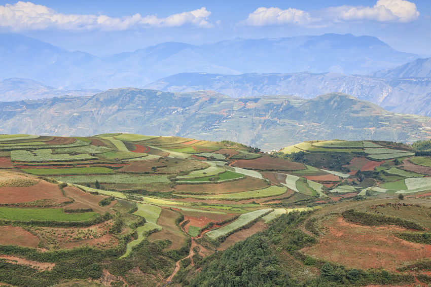 DongChuan red land panorama, one of the landmarks in Yunnan Province, China Agriculture Agriculture ASIA Autumn Beauty In Nature China Day Dongchuan Farm Green Color High Angle View Idyllic Kunming Landscape Mountain Mountain Range Nature Red Land Rural Scene Scenics Terraces Tranquil Scene Tranquility Travel Destinations Yunnan
