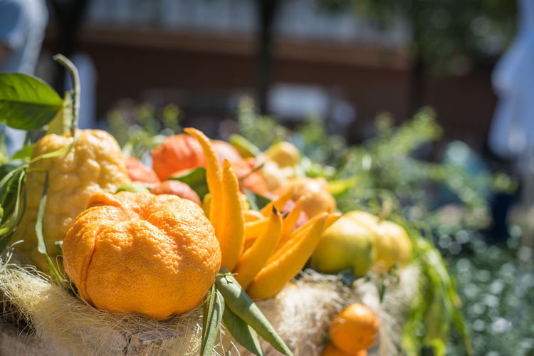 Close-up of citrus fruits