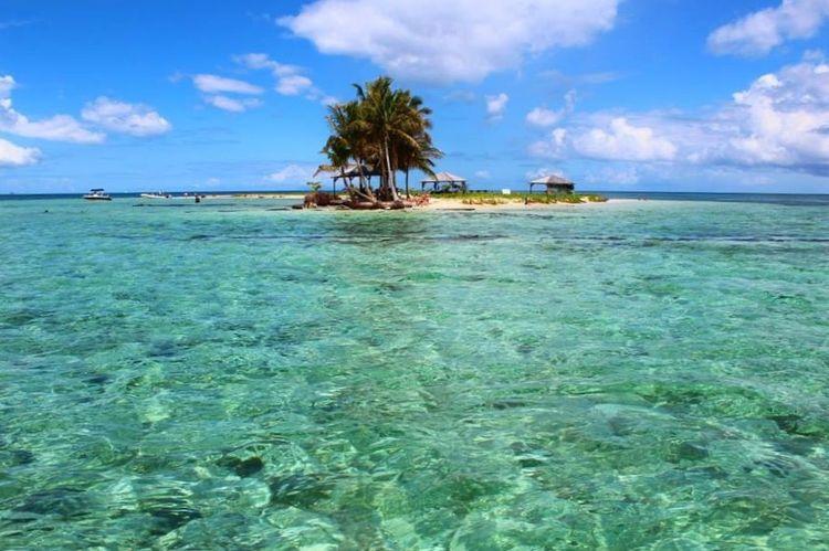 Guadeloupe Nature Island EyeEm Nature Lover
