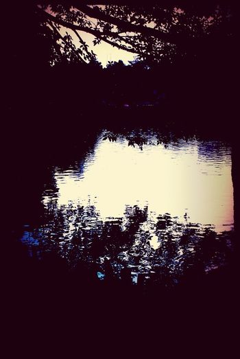 Lake Streetphotography Silhouette