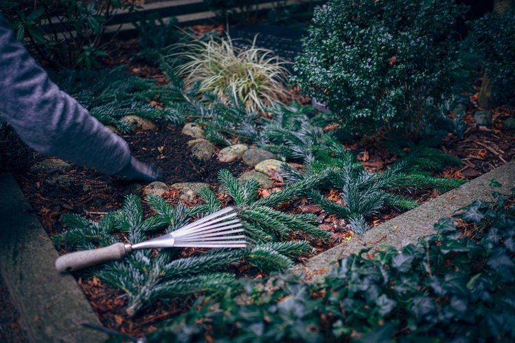 Cropped image of man working in yard