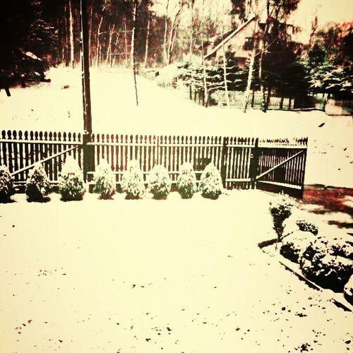 Snow MC Lovely 🍵❄⛄🎄