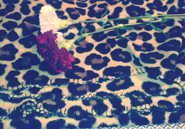 What My Lovely Boyfriend Gave Me <3