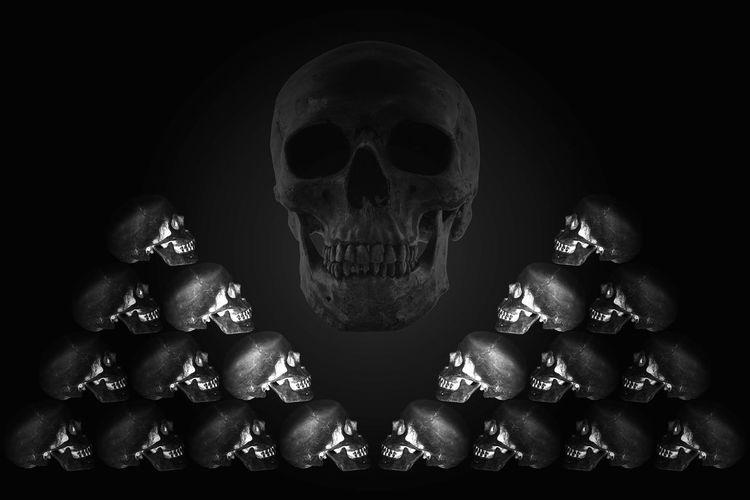 Anatomy Bone  Dark Dark Night Life Scary Set Of Skull Skeleton Skull Skull And Bones Still Life Still Life Photography