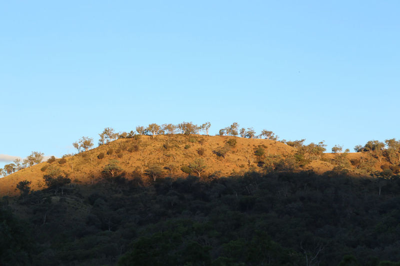 Australia Australian Bush Australian Bushland Australian Outback Bush Contrast Drought Dry Gold Golden Hour Gums Harsh Mudgee Nsw NSW Australia Sunset