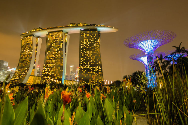 Low Angle View Of Marina Bay Sands And Supertree Against Sky In City At Night