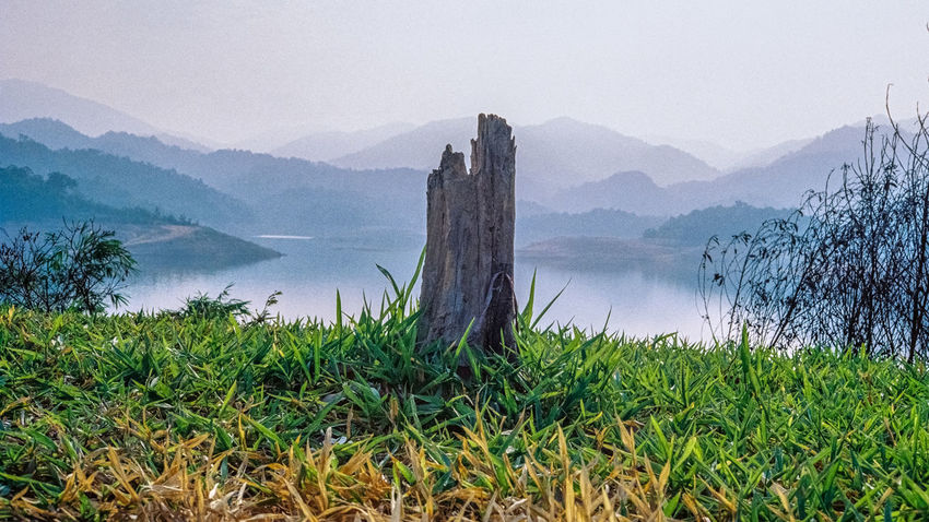 Analogue Photography Beauty In Nature Cliff Geology Grass Green Color Growth Lake Lakeshore Mountain Mountain Range Nature No People Outdoors Physical Geography Plant Remote River Riverbank Scenics Sky Tranquil Scene Tranquility Tree Stump Water