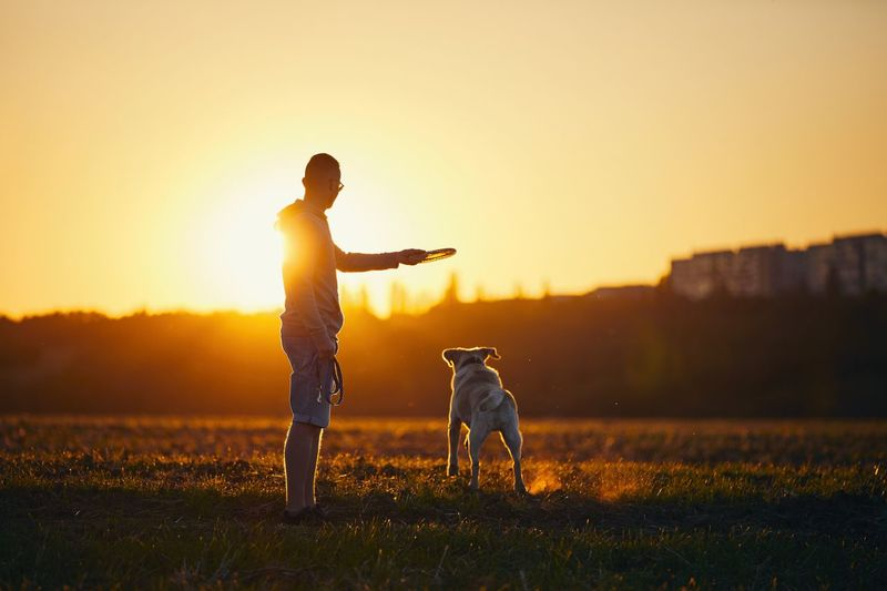 Man with dog on field during sunset