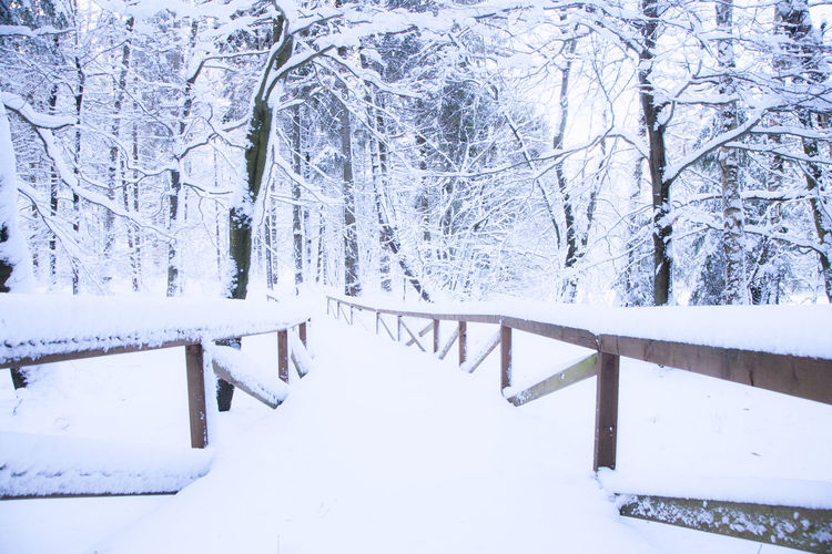 Beauty In Nature Bridge Cold Temperature Hotel Schindelbruch, Nature No People Snow Snowing Wald Weather White Color Winter