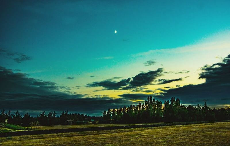 Relaxing Sunset Moon Moonlight Landscapes Sunsets EyeEm Masterclass Sunset Silhouettes EyeEmBestPics Washington Sunset_collection Moon Shots EyeEm Best Shots EyeEm Gallery EyeEm Best Shots - Landscape EyeEm Best Edits Colour Of Life Lopez Island