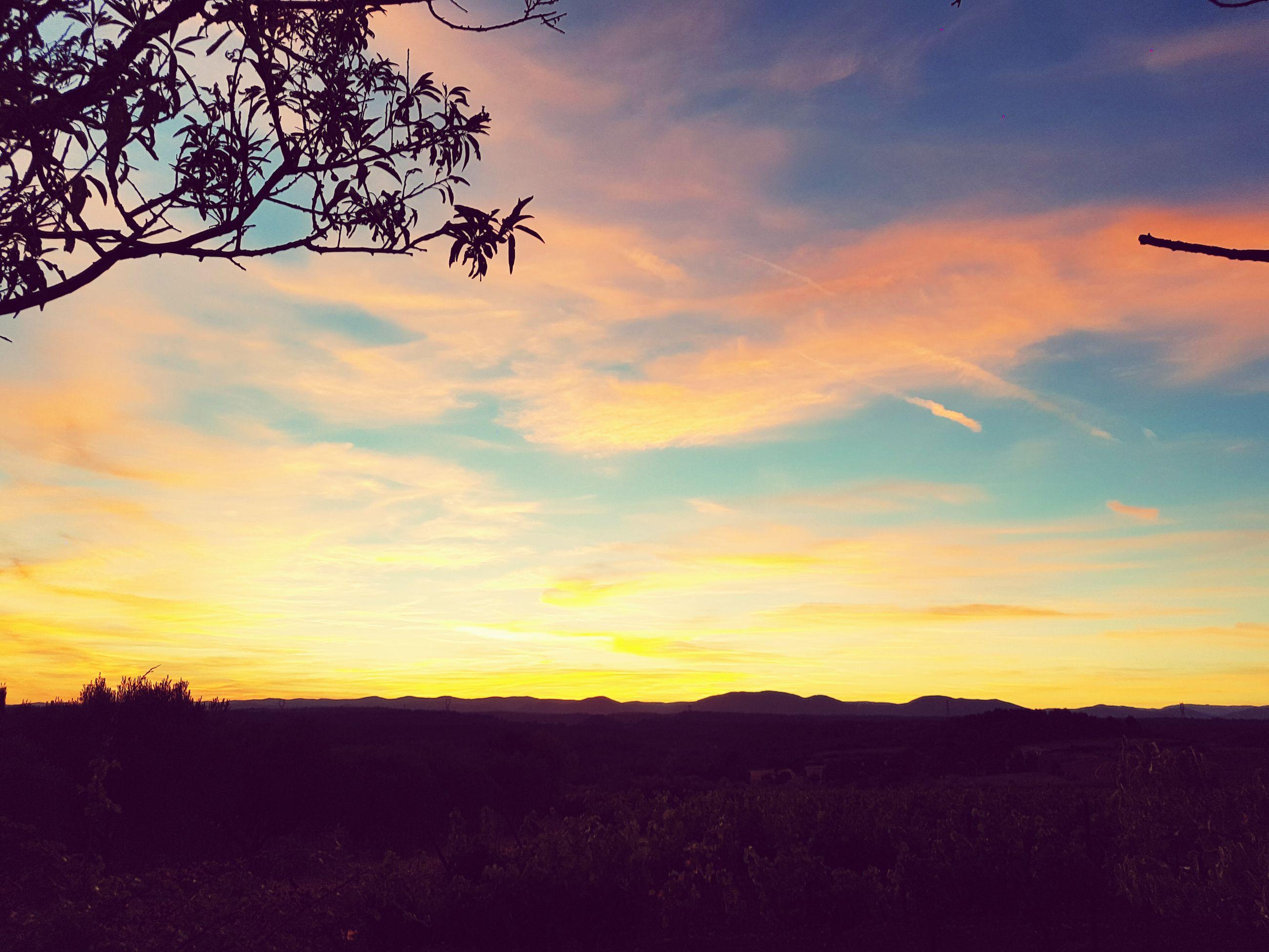 sunset, sky, tranquil scene, landscape, scenics, tranquility, beauty in nature, orange color, cloud - sky, nature, field, idyllic, tree, cloud, sun, horizon over land, rural scene, outdoors, non-urban scene, no people, non urban scene, dramatic sky, remote, cloudy, majestic, growth