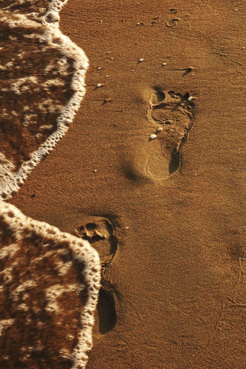 HIGH ANGLE VIEW OF FOOTPRINT ON BEACH