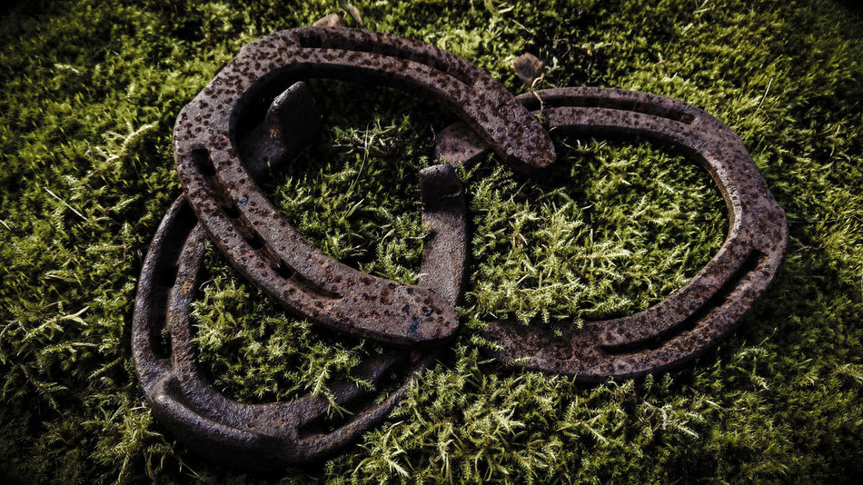 Horseshoe Outdoors Nature Rust Rusty Green Color Weathered