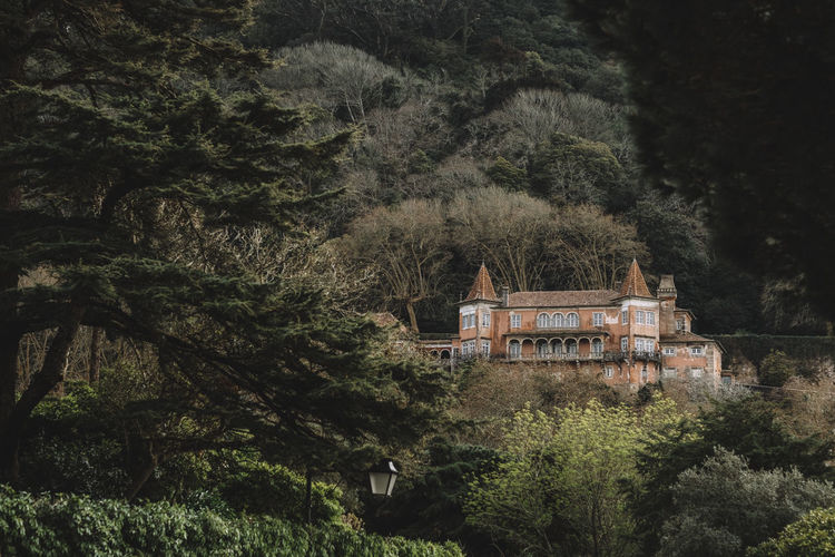 One of the many fairytale-like houses in Sintra Fairytale  Architecture Beauty In Nature Building Built Structure Forest House Nature No People Outdoors Scenics - Nature Villa