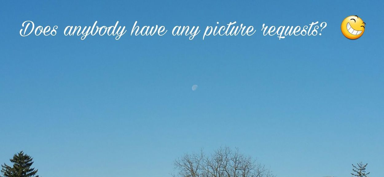 Does anybody have any picture requests? Request Requests What Do You Want? Clear Sky Moon Blue Sky Day Moon Outdoors No People