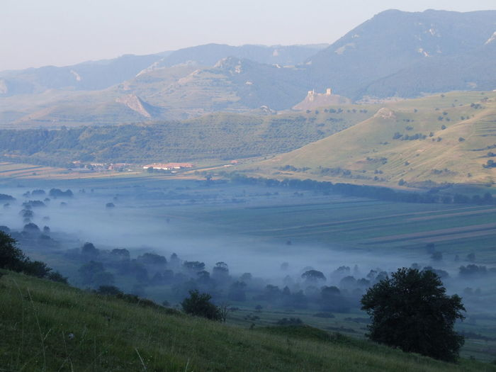 Valley of the fog Transsylvania Hiking Tourist Destination Hill Mountain Mountain Range Summer Fog Castle Ruin Tree Mountain Fog Rural Scene Beauty Tree Area Agriculture Valley Plantation Dawn Cultivated Land Patchwork Landscape Countryside Agricultural Field