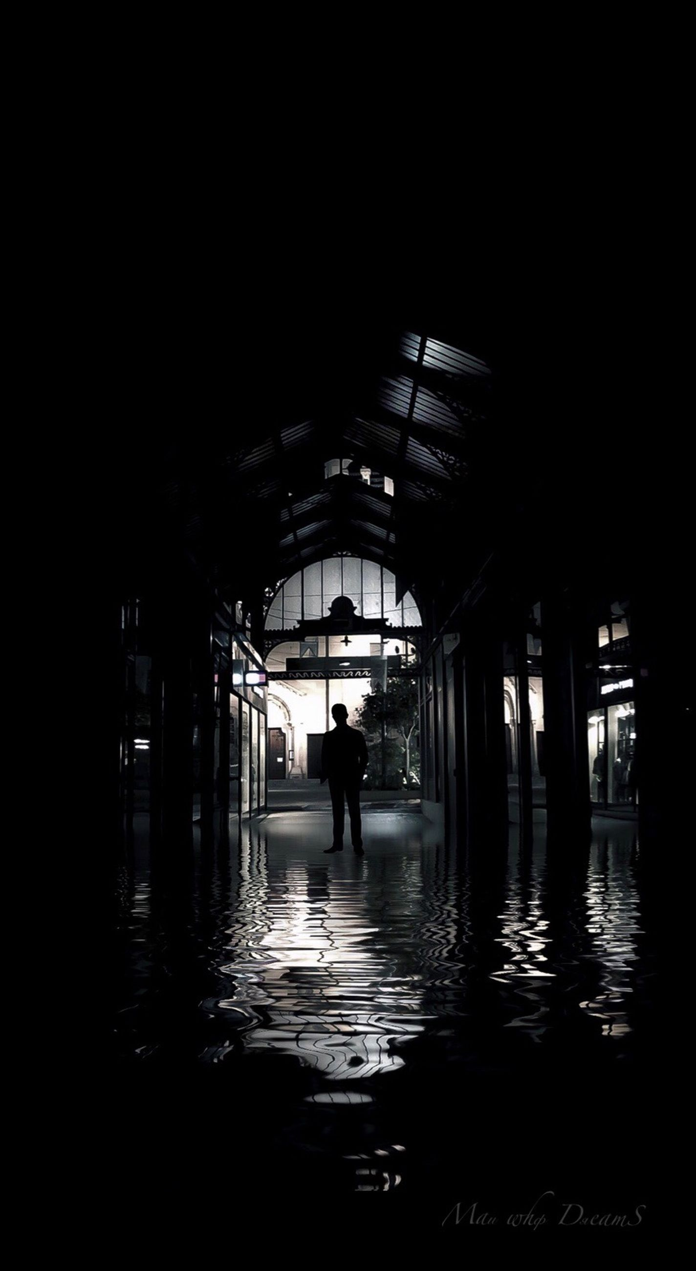 architecture, built structure, silhouette, real people, water, indoors, reflection, one person, building, standing, day, unrecognizable person, lifestyles, full length, copy space, walking, dark, architectural column, ceiling