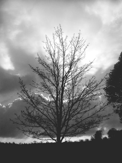 Clouds And Sky Winter Desolate Seasonal