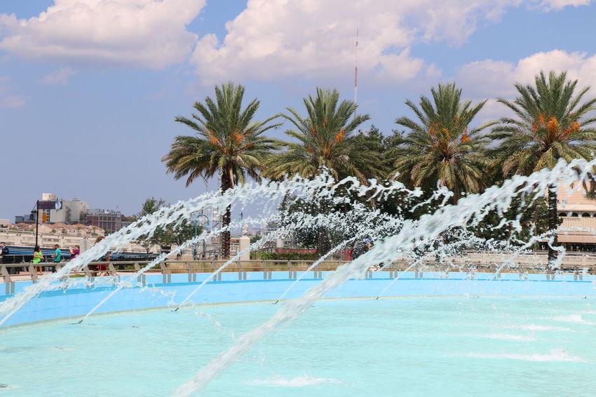Beauty In Nature Fountain Palm Tree Jacksonville Florida Life EyeEmNewHere
