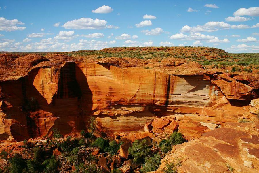 Kings Canyon Kings Canyon National Park Australia Desert Australien Outback Red Center Ausie Nature Wüste  Wildlife & Nature Bush