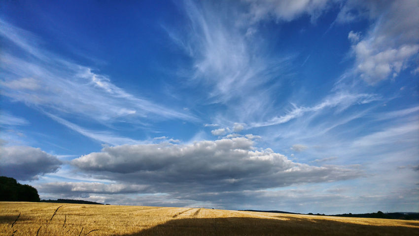 Abgeerntetes Feld Beauty In Nature Blue Blue And Yellow Cloud - Sky Day Dramatic Cloud Against Blue Sky Field Field After Harvest Gelb Und Blau Harvested Field Landscape Nature No People Outdoors Scenics Sky Stoppelfeld Stubble Field Summer Sky  Summer Sky And Clouds Tranquil Scene Tranquility