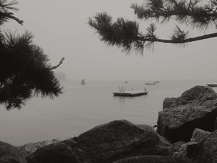 Nautical Vessel Water Tree Transportation Sky Nature Mode Of Transport Outdoors No People Sea Beauty In Nature Moored Scenics Day Clear Sky Beach Waterfront Landscape_Collection Beautiful Nature Duxbury Bay Stormy Weather Foggy Morning Blackandwhite Photography Duxbury, Ma