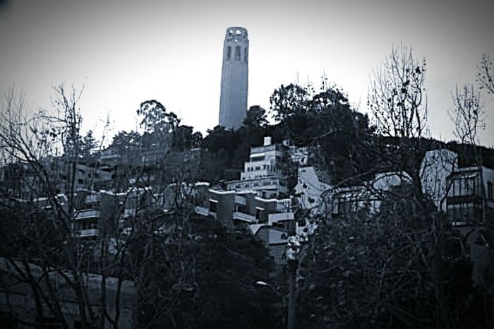 My Photography My Photography And Edit Black And White Street Photography Architecture_bw Taking Photos ❤ Street Photography My Photography. Still Life. Buildings. Artitecture. Coit Tower Tourist Attraction  Tourist Destination San Francisco Architecture Building Portrait San Francisco CA🇺🇸 San Francisco Skyline Architecture Photography Building Exterior Coit Houses And Homes Coit Tower