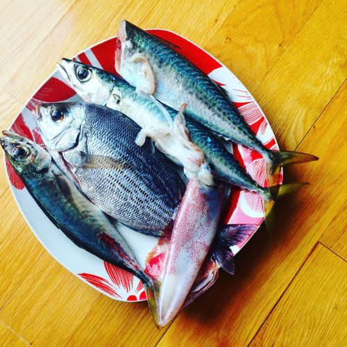 Close-up high angle view of fish on table