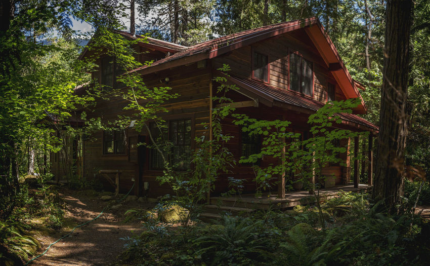 Abandoned Architecture Building Building Exterior Built Structure Cottage Day Forest Green Color Growth House Hut Land Low Angle View Nature No People Outdoors Plant Tree Wood - Material WoodLand